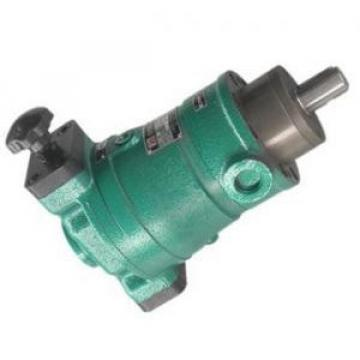 25SCY14-1B  axial plunger pump