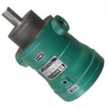80MCY14-1B  fixed displacement piston pump