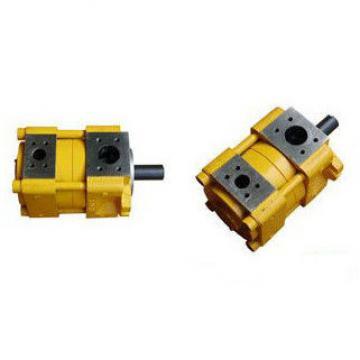 Sumitomo QT31-31.5F-A Sumitomo QT Series Gear Pump