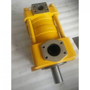 QT43-20F-A Imported original SUMITOMO QT43 Series Gear Pump